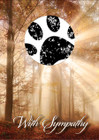 SDWOODS - with sample of stamped paw print
