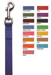 LEASH2 - 4 ft. Personalized Bolt Snap Leash