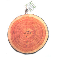 TREE Vibe STUMP Seat Cushion and LapDesk