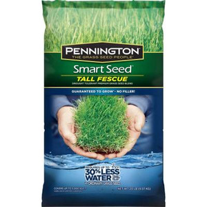 Pennington Smart Seed 20 lb. Tall Fescue Grass Seed