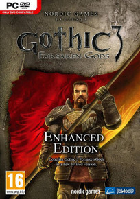 Gothic 3 Forsaken Gods Enhanced Edition (PC)