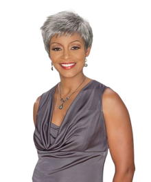 Foxy Silver Synthetic Full  Wig - Regina - Grey Colors Available