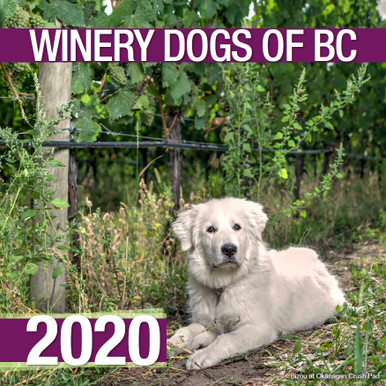 2020 BC WINERY DOGS CALENDARS ARE NOW AVAILABLE!   Winery dogs make visiting the fabulous wineries of BC even more enjoyable, some of these dogs are employed as greeters at the winery, others are tasked with protecting the precious fruit from intruders such as bears and deer. Some of these dogs are BCSPCA rescue dogs - so it is only fitting that partial proceeds from the sale of this calendar are donated to the BCSPCA to help other animals in need.