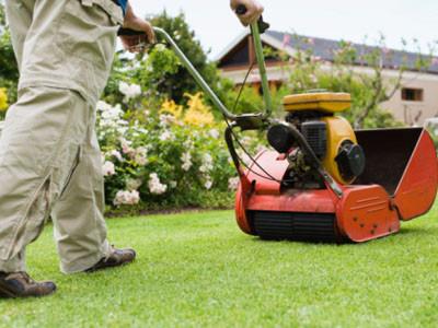 Mantenimiento De Las Areas Verdes: Sea Un Profesional