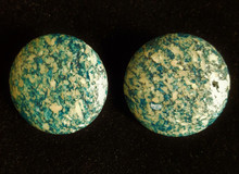 #A02  TURQUOISE FOSSIL STONE EARRING