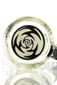 Illadelph Gallery - V2 7mm Mini Beaker with New Black Label Base
