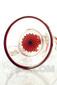 Illadelph x JM Flow Sci Glass - Detachable Red Triple Coil Collab Base