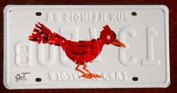 CARDINAL RED BIRD License Plate by John Taylor