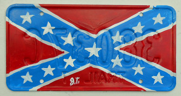 CONFEDERATE LICENSE PLATE  (REBEL)  by John Taylor