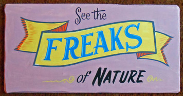 COLORFUL CIRCUS - CARNIVAL FREAKS SIGN