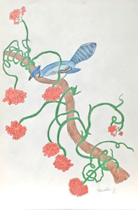 BLUEJAY in the Vines by Claudia