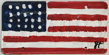 AMERICAN FLAG LICENSE PLATE  painted by John Taylor