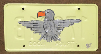 EAGLE - PAINTED LICENSE - by John Taylor
