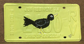 BLACKBIRD PAINTED LICENSE PLATE by John Taylor