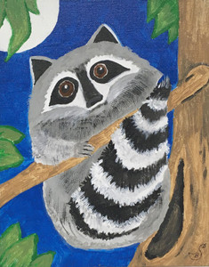 ONE RACCOON in a Tree by Sharon Boggs