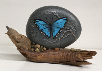 BLUE BUTTERFLY on a Rock by Martha Winenger