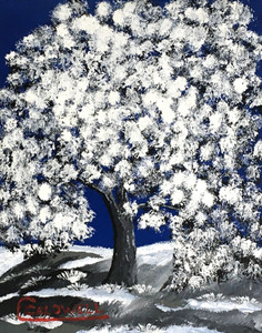 SNOWY TREE at MIDNIGHT - 16 - by Chris Caldwell