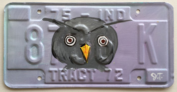 OWL HEAD License Plate by John Taylor