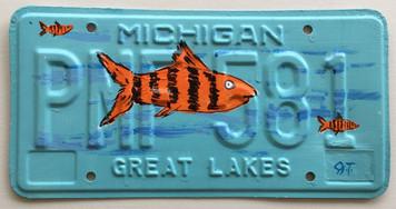 TIGER FISH License Plate by John Taylor