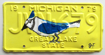 BLUEJAY License Plate by John Taylor