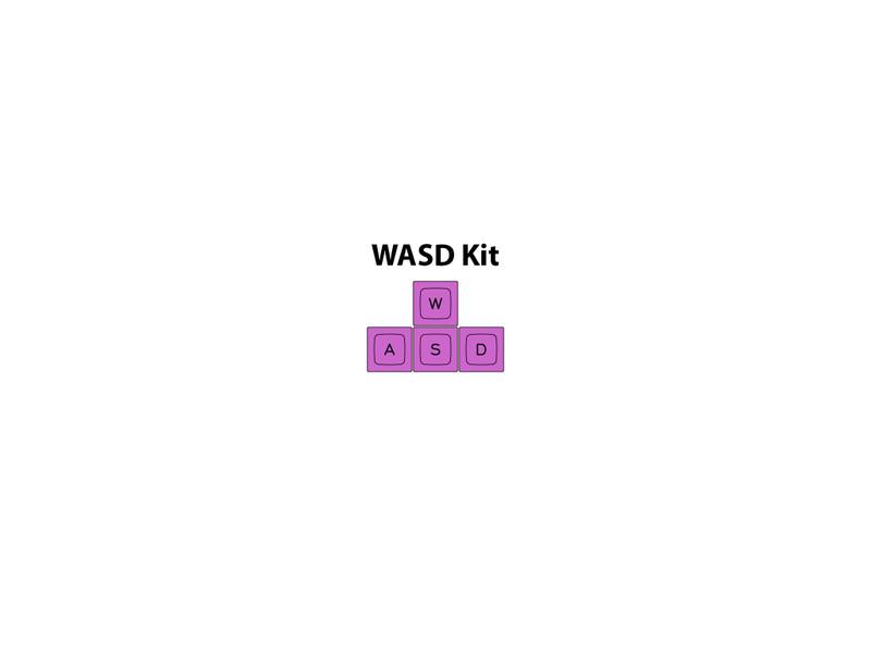 WASD Kit