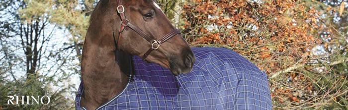 horse wearing Rhino turnout blanket