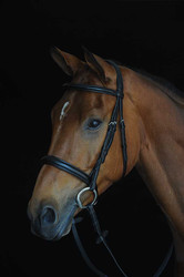 Collegiate Comfort Crown Padded Cavesson Bridle - Black