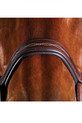 Noseband Detailing On The Collegiate Comfitec Fancy Stitch Bridle