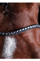 Headband Detailing Of The Collegiate Comfitec Crystal Bridle