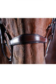 Noseband Of The Collegiate Comfitec Crystal Bridle
