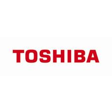 Toshiba Stratagy iES32 Voice Processing Server