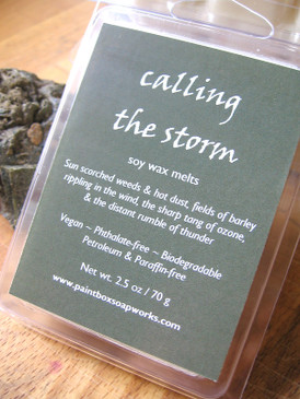 Calling the Storm Soy Wax Melts - Scorched Herbs, Hot Dust, Ozone, Thunder... Summer Limited Edition