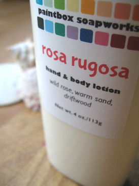 Rosa Rugosa Organic Hand and Body Lotion - Wild Beach Rose, Warm Sand, Driftwood... Summer Limited Edition