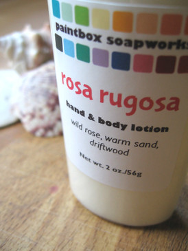 Rosa Rugosa SAMPLE SIZE Organic Hand and Body Lotion - Wild Beach Rose, Warm Sand, Driftwood... Summer Limited Edition