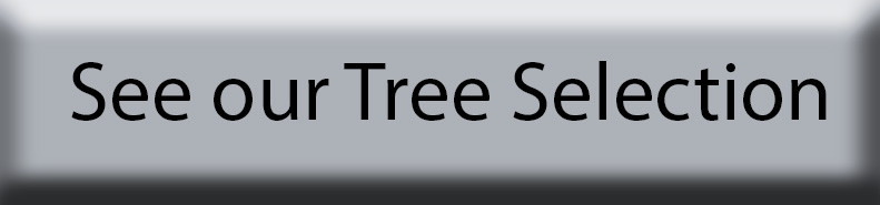 see-our-trees.jpg