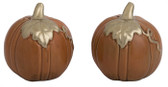 Classic Pumkins Salt and Pepper Shakers S/2