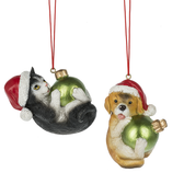 Cat & Dog with Christmas Ball Ornament