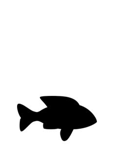 fishy3.jpg