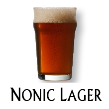 Glass Blasted Artistic Glassware - Nonic Lager
