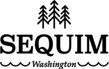 Custom listing - Seqium logo on 12 64oz growlers