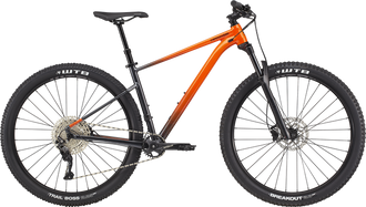 2021 Cannondale Trail SE 3 Small