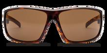 Electric Backbone sunglasses - tortoise /m bronze 127 -10643