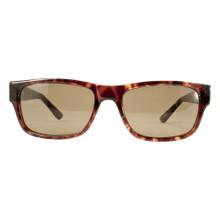Black Flys McFly Sunglasses - Shane Sheckler Ltd Ed. - Shiny Tortoise - Brown