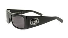 Black Flys Fly Detector sunglasses - gloss black