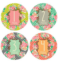 Flower Girl Monthly Stickers