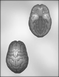 "4"" 3-D BRAIN CHOCOLATE CANDY mold"