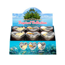 Earthly Body Tropical Candle Collection - 12pc Display + Pineapple Tester