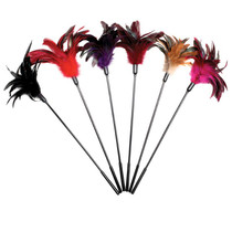Starburst Feather Tickler (Assorted Display)
