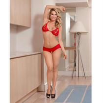 Magic Silk Luv Lace Peek-a-Boo Bra & Split Back Short Red L/X