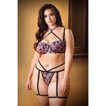 Curve Antoinette Harness Bra and Matching Caged Panty with Detachable Leg Harness 3X/4X Pink/Black